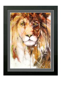 LionofColors